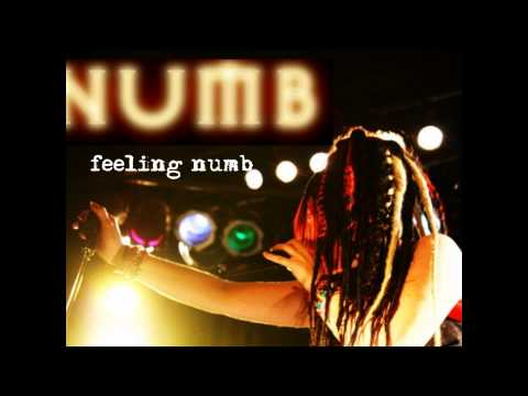 Circus Asylum - Numb (Lyric Video)