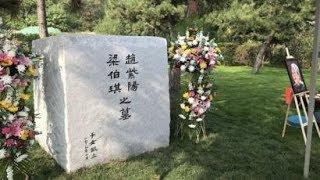 缅甸行倒霉透顶,习近平名字成脏话!王沪宁拿墓地做文章,用心良苦。普京难以捉摸