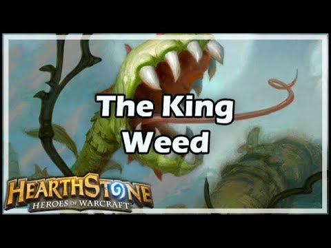 [Hearthstone] The King Weed