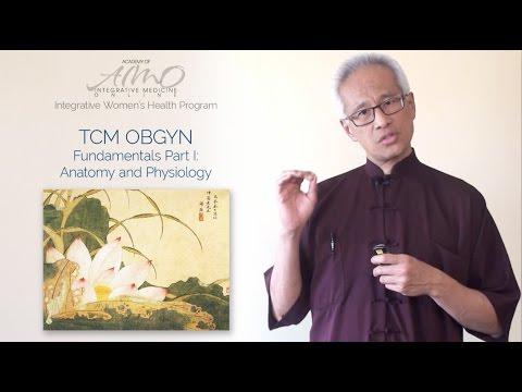 Chinese Medicine OB GYN Fundamentals 1: Online CEU course