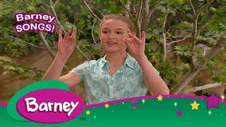 Barney|Sign Language|Twinkle Little Star