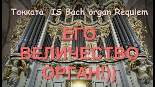Потрясающая музыка!! И С  Бах. Орган. Токката/  I.S. Bach Organ Requiem