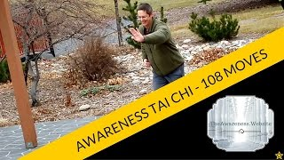 108 Move Tai Chi Set Taught To Me By Mr. Moy Lin Shin