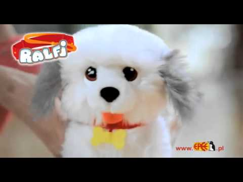 Epee Interaktywny Piesek Ralfi | zabawkiTV