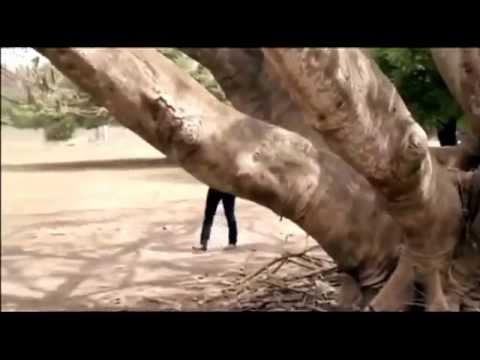 Kudii Klepto pt 1 (Yoruba Movie)