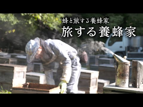 , title : '蜂と旅する養蜂家 旅する養蜂家 ≪すごもり おむすび博 ~YouTubeで大垣を見てみよう~≫