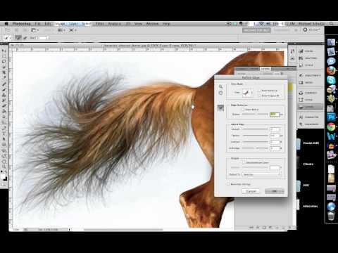 how to quickly select images cut out detailed images in photoshop cs5