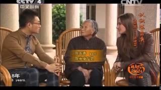 20140530 快乐汉语 认识陈嘉庚 语言点:......这就是......