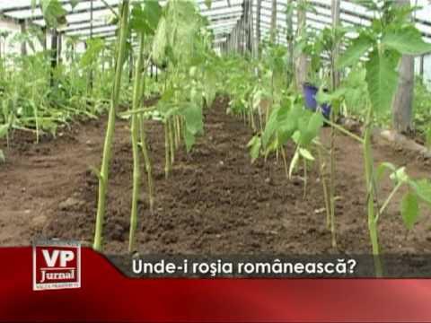 Unde-i roşia românească?