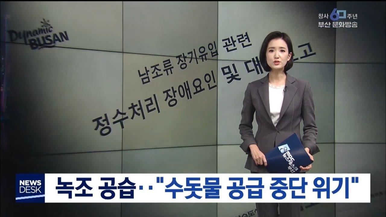 """녹조 공습...""""지난해 수돗물 공급 중단 위"""