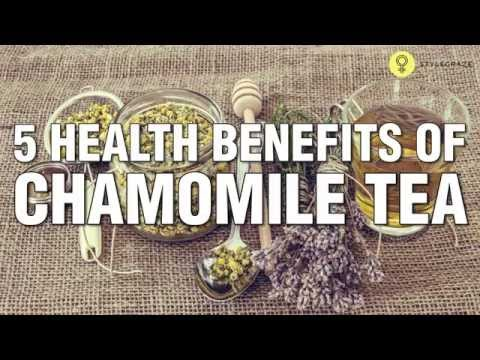 Video 5 Amazing HEALTH BENEFITS OF CHAMOMILE TEA