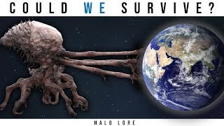 Could the Earth Survive a Flood Infection? (One Single Spore) | Halo Lore - dooclip.me
