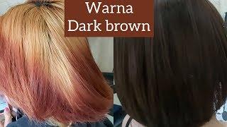 Warna Rambut Dark Brown