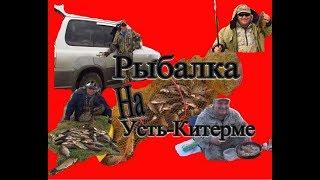 Ловля карася в омской области