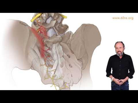 Die Einstellung sytin Video von der Osteochondrose