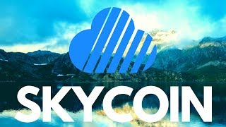 10 Skycoin Facts! The Good, The Bad and The Ugly