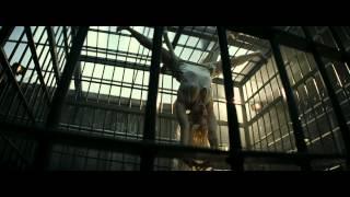Official Trailer - Suicide Squad