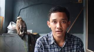 Plot Elang Bondol – Pulau Kotok