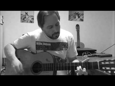 Bandera - Instrumental - Willie Nelson cover