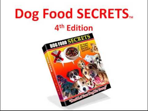 all all natural dog food dog food