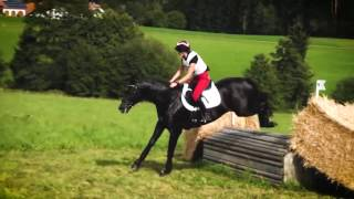 video of Lebenstraum