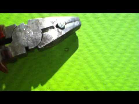 Die Pergamenthaut der Hände gribok auf den Nägeln