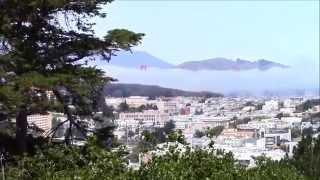 Buena Vista Park, San Francisco