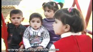 preview picture of video 'petals growth montessori Mansehra'