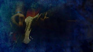 Video DayDreams - Magic Night (Lyrics Video)