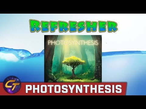 Photosynthesis - Refresher on How to Play // Cosmic Tavern