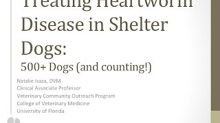 Treating Heartworm Disease in Shelter Dogs: 500+ Cases (and counting) - conference recording
