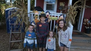 Fall Friday: Pumpkin Picking and our very first Corn Maze!