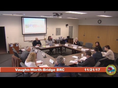 Vaughan-Worth-Bridge Blue Ribbon Committee 11.21.17