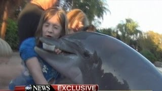 Dolphin Bites Girl at SeaWorld: Caught on Tape - Jillian Thomas Interview on 'GMA'
