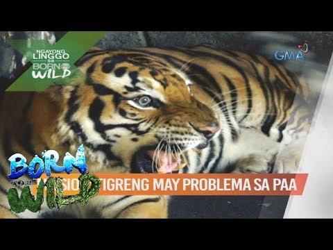 Natural na mga remedyo para sa kuko halamang-singaw ng paa