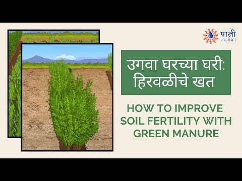 How to Prepare Green Manure