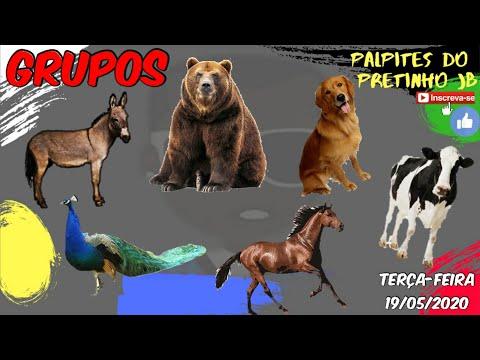 PALPITES JOGO DO BICHO 19/05/2020 PRETINHO JB