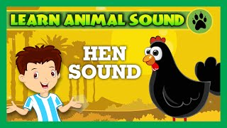 Animal Sound for Children | Hen Sound, Sheep Sound, Rabbit Sound | Kids Hut