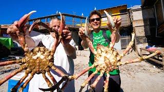 Huge MARTIAN Crab!! 🦀🇲🇽 MEXICAN FOOD in Popotla Fishing Village, Mexico!