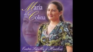 Dibujando Marismas - María De La Colina
