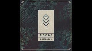 Plantrae   Momentum