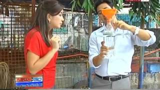 News to Go - Solar bulbs light up Laguna community 3/11/11