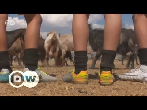 Turkey: Soccer team trades players for goats | DW English