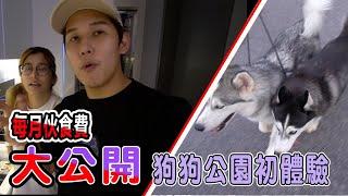 第一次帶Jeff Inthira狗狗散步公園初體驗!公開狗狗每月伙食費,驚人數字阿!養狗容易嗎? (Jeff Inthira & Kungfu Panda)