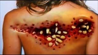 These Pictures Will Cause Your Skin To Crawl (tryptophobia Challenge)