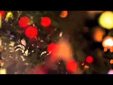 Darren Morfitt - Glorious (Original Mix) [TBA] OFFICIAL TEASER VIDEO