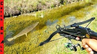 CROSSBOW Mini FISHING ROD MODIFICATION diy CATCHES FISH!