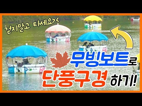 [숏클립] 무빙보트타고 가을여행하기! (2019.11.15, 금)