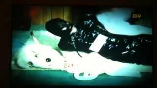 Boba Fetish - Carcass Crawling - Video Youtube