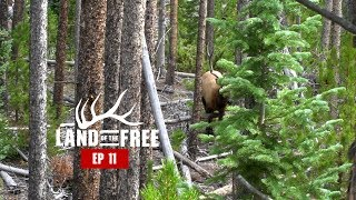 BOWHUNTING ELK IN COLORADO - EP 11 - LAND OF THE FREE 2.0